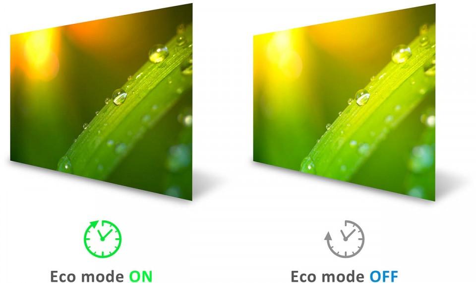 Màn hình Viewsonic VX3218-PC-MHD-eco