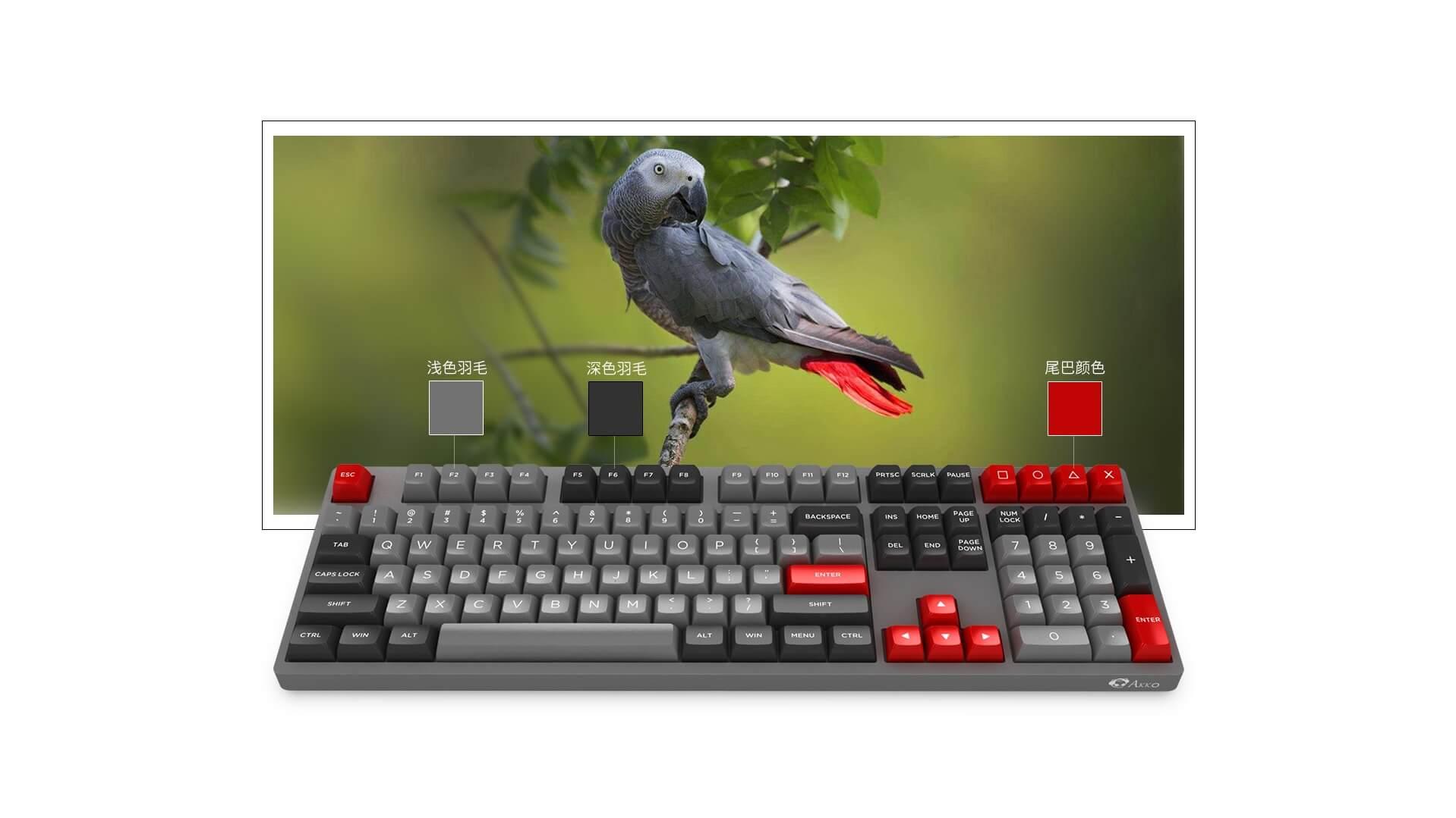 Bàn phím cơ Akko 3108 V2 OSA Grey Parrot Psittacus Gateron Yellow Switch  có thiết kế lạ, bắt mắt