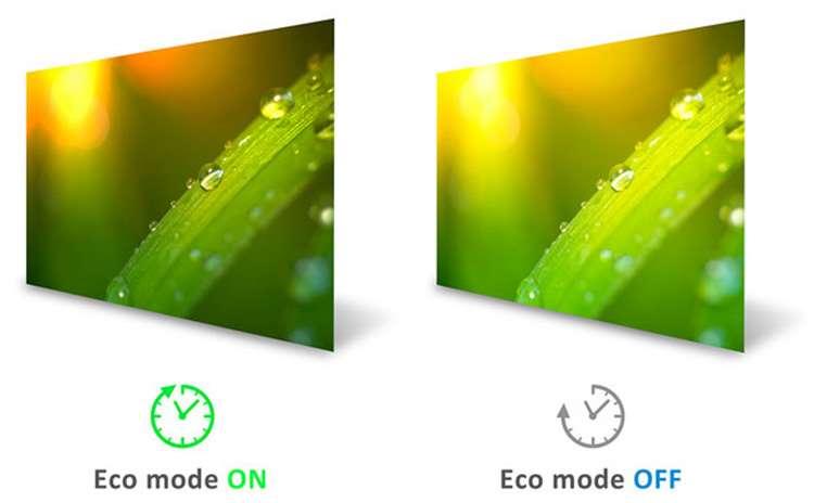 Màn hình Viewsonic VX3211-4K-MHD-5