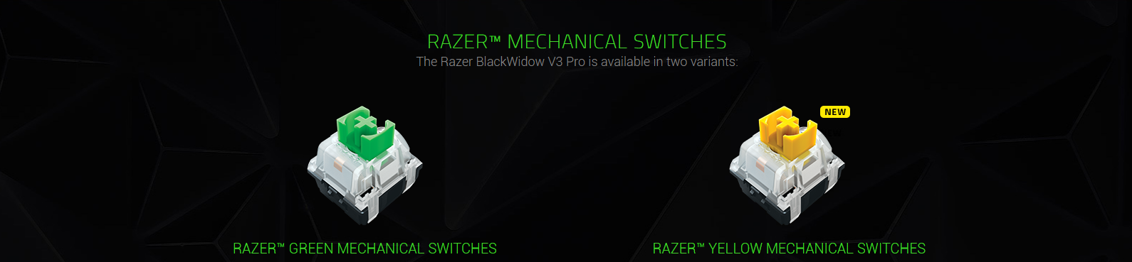 Bàn phím Không dây Razer BlackWidow V3 Pro (USB Wireless/Green switch/Bluetooth) (RZ03-03530100-R3M1) sử dụng switch Razer độc quyền