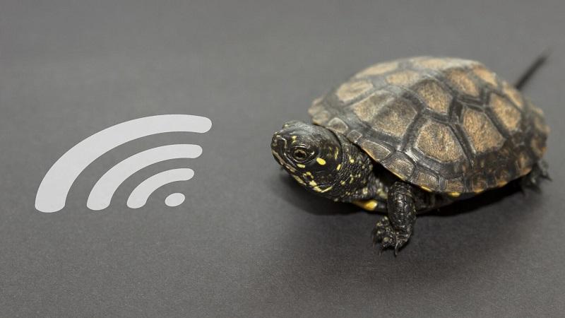 Laptop bắt wifi yếu, lag, chập chờn sửa thế nào?