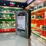 Ổ cứng HDD Western Caviar Black 1TB 3.5 inch 7200RPM, SATA3 6Gb/s, 64MB Cache